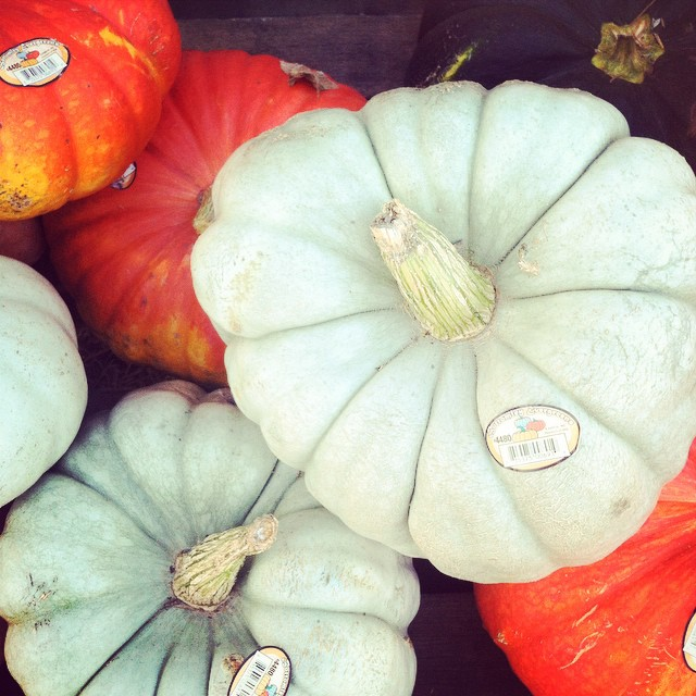 I'm totally in love with these grey pumpkins. I can hardly believe it is almost time for the black and orange month—also known as October! Come hear and see me talk about color on Sept. 26 at Center Stage! @Baltimore_CM #cmbal #color #CreativeMornings #baltimore #ColorsThatInspire