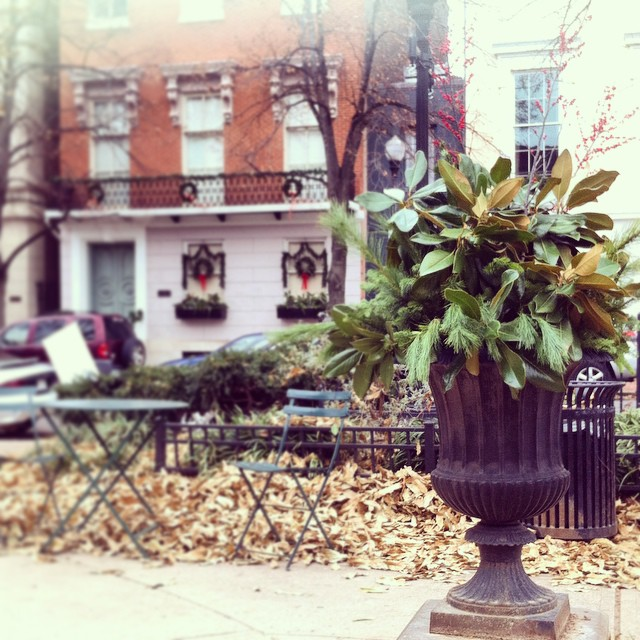 Yesterday, Drew and I helped the @mountvernonplace conservancy decorate the urns and concrete planters, in all 4 parks of Mount Vernon Place, with magnolia, pine, and other evergreens for the most festive of holidays. If you are  in Baltimore for the holidays, stop by an enjoy the decorations. P.S. Check out the wreaths and garland on the front of our house and our neighbors while visiting the parks. Next year, we hope to get more residents and institutions in the 'hood to join us in decorating with lights and greenery! After all, Mount Vernon deserves to have only the best decorations in town. :)